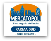 Mercatopoli Parma Sud
