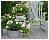 giardino-in-stile-rétro