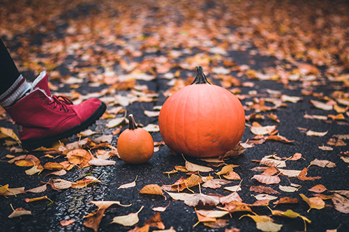 autunno-sostenibile