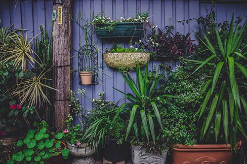 primavera-in-giardino